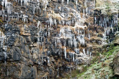 Icicles hanging from a cliff Stock Images