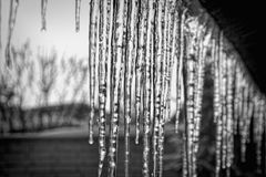 Icicles hanging down from the roof in black and white Stock Image