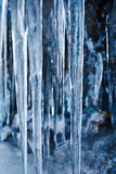 Icicles hanging on mountain rock Royalty Free Stock Photography