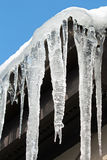 Icicles 6 Royalty Free Stock Photography