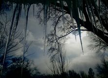 Icicles Hanging Off Roof - View from Inside, Looking out of a Window royalty free stock photography