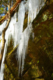 Icicles hanging from rocks Royalty Free Stock Photography