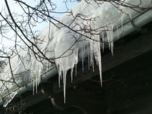 Icicles hanging from roof. Low angle view of icicles hanging from rooftop in winter scene Stock Photos