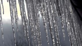 Icicles hanging from roof begin to melt with the coming of spring. Close up. stock footage