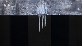 Icicles hanging from the roof royalty free stock images