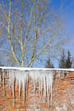 Icicles hanging from the roof Stock Image