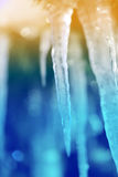 Icicles from  ice Stock Image