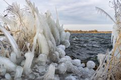 Icicles and ice sculptures on the shore of a lake during a cold spell in winter royalty free stock photo