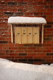 Icicles on letter boxes Stock Photography