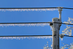 Icicles on Line Stock Photo