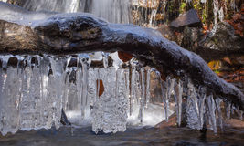 Icicles on log over water Royalty Free Stock Images