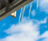 An icicle in the sun Stock Photography