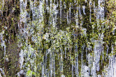 Icicles on Mountain Cliff Royalty Free Stock Photos
