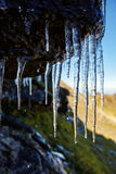 Icicles on a mountain cliff Royalty Free Stock Photos