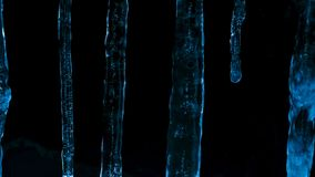 Icicles at night against the dark of forest and winter twilight royalty free stock image