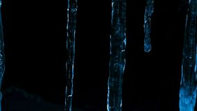 Icicles at night against the dark of forest and winter twilight royalty free stock photo