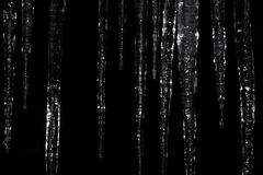 Icicles at Night. Shiny natural crystal like icicles contrast beautifully against the backdrop the black of a dark winter night Royalty Free Stock Images