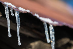 Icicles on an old iron roof Stock Image