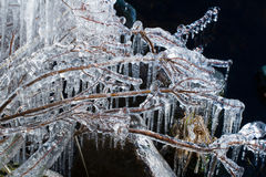 Icicles On A Lake Royalty Free Stock Photos