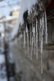 Icicles. After a rain all night and then turning to snow everything was frozen Stock Image