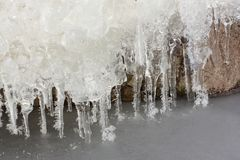 Icicles in  rime on a stone on a freezing river. Ob reservoir, Siberia, Russia Royalty Free Stock Image