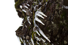 Icicles on rocks Stock Photography