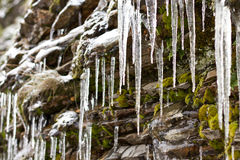 Icicles on rocks Royalty Free Stock Photos