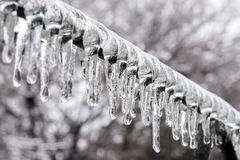 Icicles on the rod. Asymmetric icicles on the metal rod. Trees background. Winter Royalty Free Stock Photos