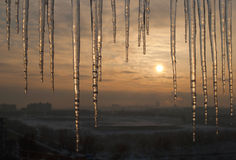 Icicles on roof with beautiful sunrise Royalty Free Stock Images