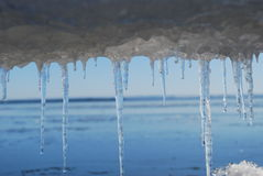 Icicles by the Sea Royalty Free Stock Image