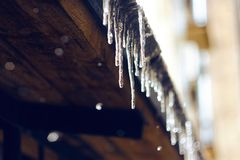 Icicles shining in the sun and hanging from the roof royalty free stock photos