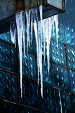 Icicles spring Royalty Free Stock Image