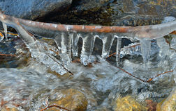 Icicles and stream 6 Stock Images