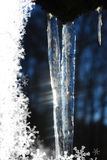 Icicles in the sun Royalty Free Stock Photo