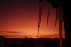 Icicles in sunset Stock Photo