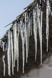 Icicles on a thatch. Of a traditional cottage house in Ocsa, Hungary royalty free stock images