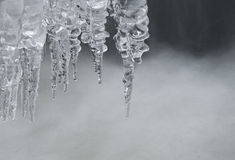 Icicles on the water. Royalty Free Stock Image