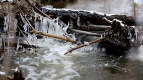 Icicles on the water. stock video footage