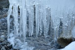 Icicles and waves along the shore Royalty Free Stock Image
