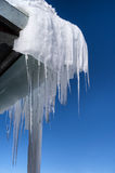 Icicles in winter Royalty Free Stock Photography