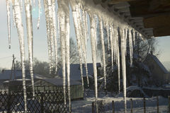 Icicles in winter thaw on the ledge Stock Images