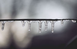 Icicles on the wire. Wire covered with icicles in winter Royalty Free Stock Photos
