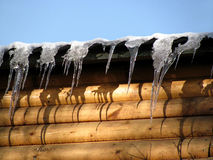 Icicles on a wooden wall Stock Image