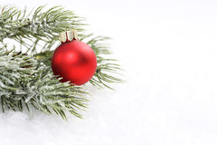 Icing pine branch with cone and red matt christmas ball on snow. Horizontal Royalty Free Stock Image