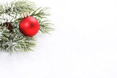 Icing pine branch with cone and red matt christmas ball on snow. Horizontal Stock Photography