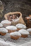 Icing sugar falling on fresh vanilla muffins Royalty Free Stock Image