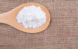 Icing Sugar II. White refine sugar in wooden spoon on gunny sack background Stock Images