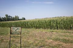Icke-GMO tecken framme av havrefältet i midwest USA arkivbild
