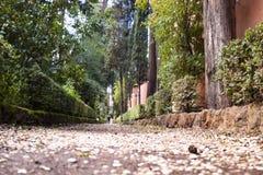 Icke-katolik kyrkogård Royaltyfria Bilder