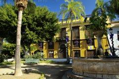 Icod de los Vinos, Tenerife, Canarische Eilanden, Spanje royalty-vrije stock foto